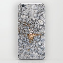 013 iPhone Skin