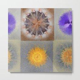 Sarcophagi Woof Flowers  ID:16165-112239-34720 Metal Print