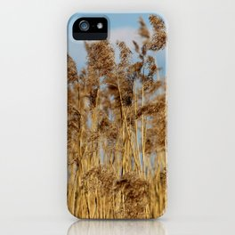 Lenz gently blowing the stalks iPhone Case