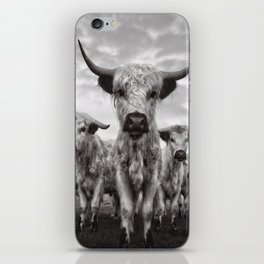 Highland Cattle Mixed Breed Mono iPhone Skin
