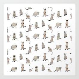 Raccoon pattern Art Print