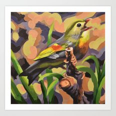 Red Billed Leiothrix Art Print