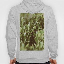 Plants Hoody
