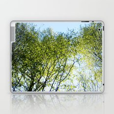 Day Dream Laptop & iPad Skin