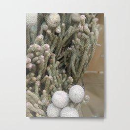 Christmas Nativity xmas yuletide Metal Print