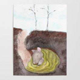 Hibernation Poster
