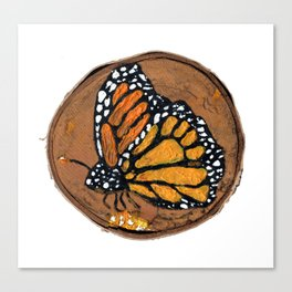 Monarch Butterfly No.1 Canvas Print