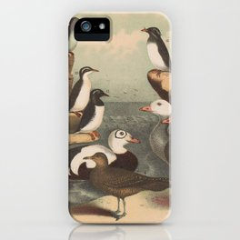 Darly Matthias (Publisher)___ _1208 The Bengall minuet iPhone Case