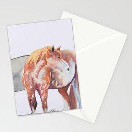 Sabino and Grulla Stationery Cards