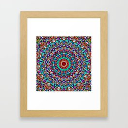 Colorful Life Garden Mandala Framed Art Print