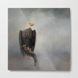 High Perch - Bald Eagle - Wildlife Metal Print