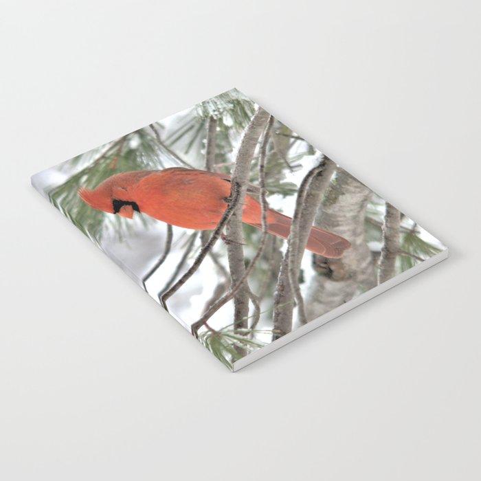 Snow Globe Cardinal Notebook