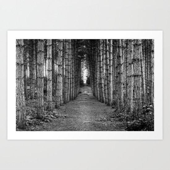 The Quiet Walk Art Print