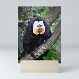 Saki Monkey Mini Art Print