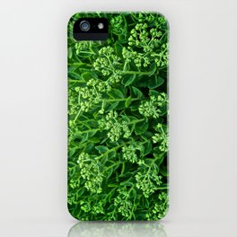 Beautiful Green Pattern - The Peace Collection iPhone Case