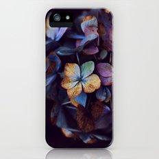 Hydragena Dream  iPhone (5, 5s) Slim Case