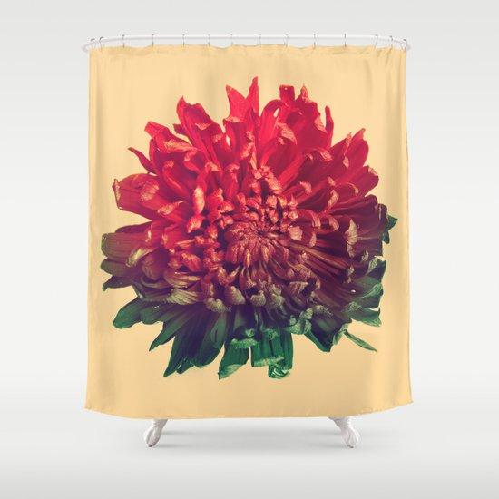Celebration Shower Curtain