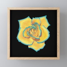 Yellow and Turquoise Rose on Black Framed Mini Art Print
