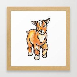 Baby Goats: Buttercup Framed Art Print