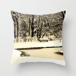 Winter scenery in a park Throw Pillow