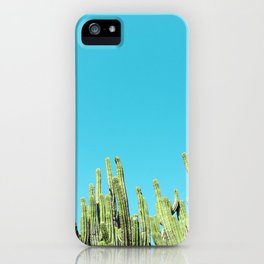 Desert Cactus Reaching for the Blue Sky iPhone Case