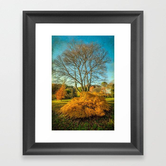 Autumnal Garden Framed Art Print