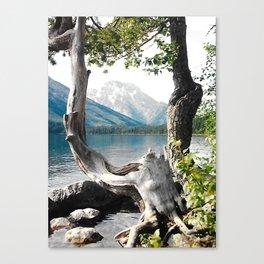 Tetons at Jackson Lake Wyoming Canvas Print