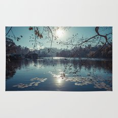 India - Blue lake Rug