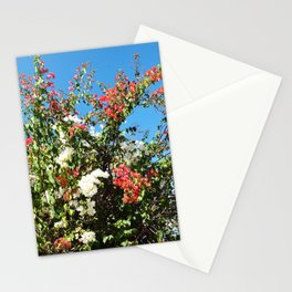 Melrose Wildflowers Stationery Cards