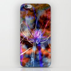 Floral Cloud Spectacle iPhone & iPod Skin