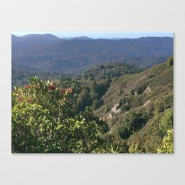 Castle Rock State Park - California Canvas Print