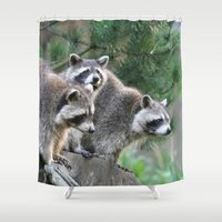 racoon Shower Curtains featuring Racoon 001 by jamfoto