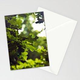 Dreamy forest - Landscape Photography #society6 Stationery Cards