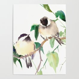 Chickadees, birds on tree, bird design neutral colors Poster