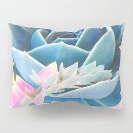 Bold Succulent Pillow Sham