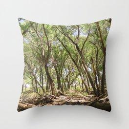 San Pedro River Bank Throw Pillow