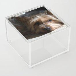 Lazy Kind of Day Acrylic Box