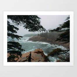 Foggy Morning in Acadia National Park Art Print
