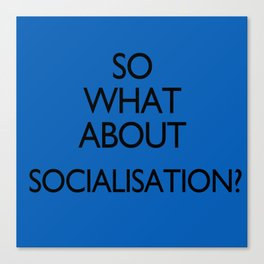 What about Socialisation? Canvas Print