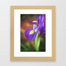Spring Royalty Framed Art Print