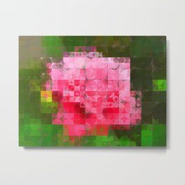 Pink Roses in Anzures 4 Abstract Circles 2 Metal Print