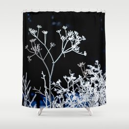 Frosted plant at cold winter day on black background Shower Curtain