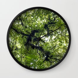 Palm Trees and Ferns Growing up towards the Sky on Mombacho Volcano, Nicaragua Wall Clock