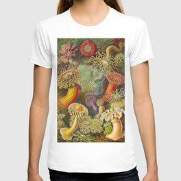 Vintage Sealife Underwater T-shirt