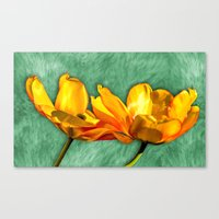 tulip Canvas Prints featuring tulip  by Karl-Heinz Lüpke