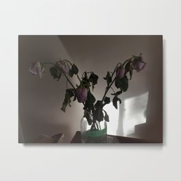 Sleeping Roses Metal Print
