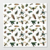 insects Canvas Prints featuring Insects by Noughton