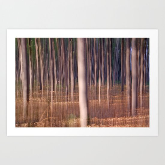 magical forest at sunset Art Print