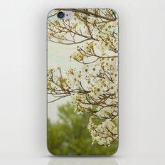 Dogwood Breeze iPhone & iPod Skin