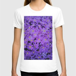 violet  chrysanthemum T-shirt